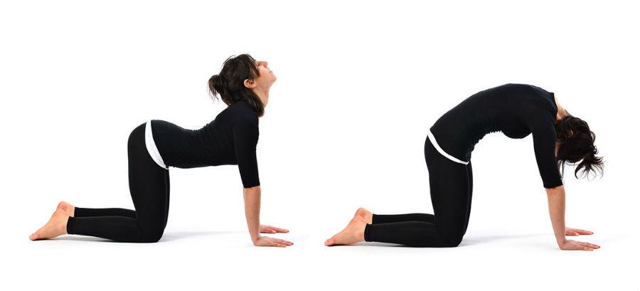 Хатха йога в фитнесе